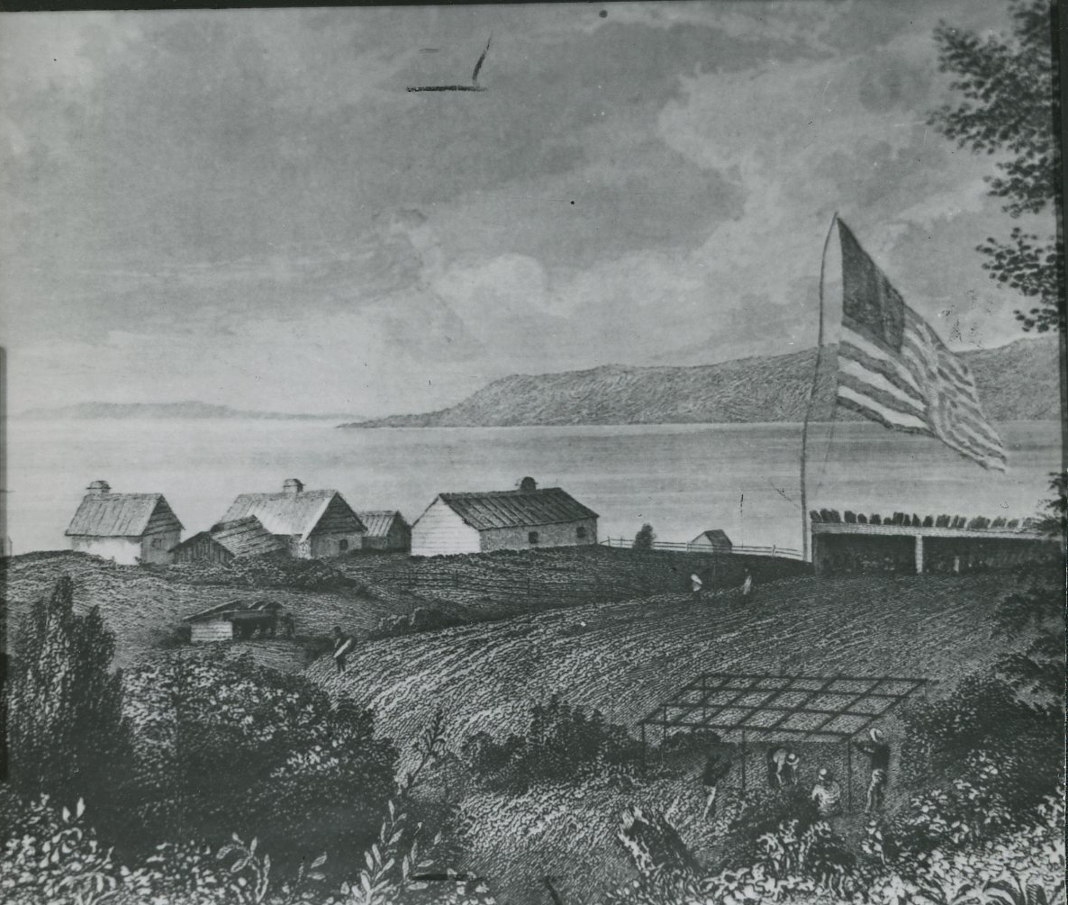 A black and white landscape drawing. In the foreground, there is lush foliage and workers are building a structure and working in a field. Three of the workers wear a light-colored wide-brim hat. There are two sheds alongside the field and three full-size buildings with chimneys in a cluster. Two smaller buildings without chimneys are nestled between the buildings. A massive American flag--about five times the size of any of the buildings--hangs over the fields. A bay and rolling hills are in the background.