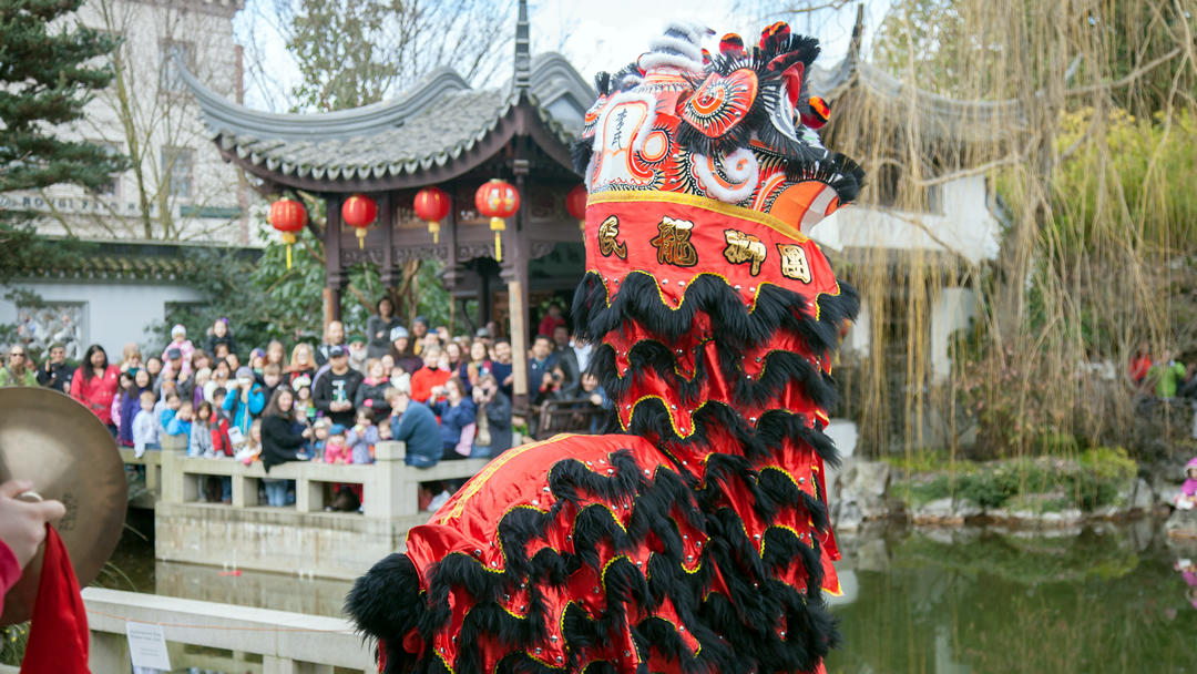 A modern, color photograph of a lion dancer. The headdress is primarily red and black with some gold Chinese text, and none of the performers are visible. In the background, a large group of onlookers is visible.